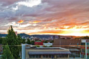 Wine Bar | 10 Best Portland Bars for Summer
