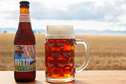 Wine Bar | 7 Best Portland Oktoberfest and Pumpkin Beers for Fall
