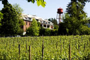 Edgefield's 13th Annual Syrah Celebration, April 11-12