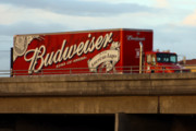Craft Beer Portland | US Justice Department to Investigate AB-InBev After Complaints of the Company Pushing Craft Beer out of Distributors | Drink Portland