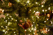 Wine Bar | These Portland Bars are Open on Christmas Day