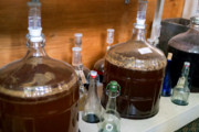 Craft Beer Portland | Move Over Kombucha, Kefir Beer Could Be the Next Big Thing in Fermentation | Drink Portland