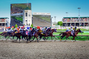Wine Bar | Where to Watch the 2018 Kentucky Derby in Portland